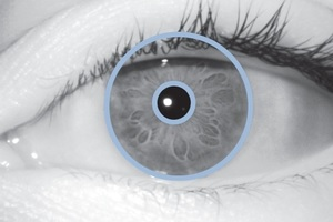 Iris Eye Sample.jpg